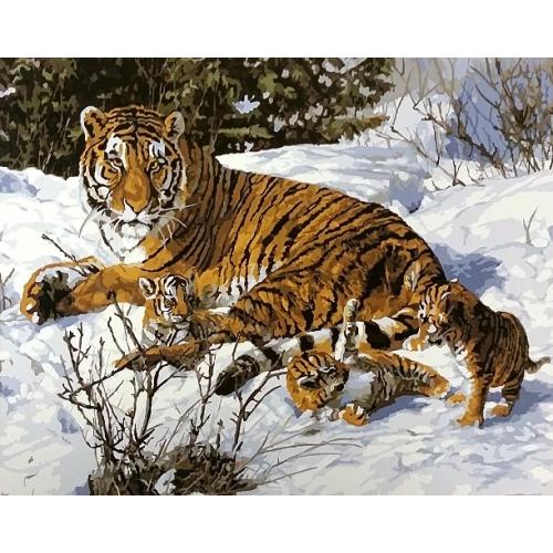Картина по номера 40х50 Тигры