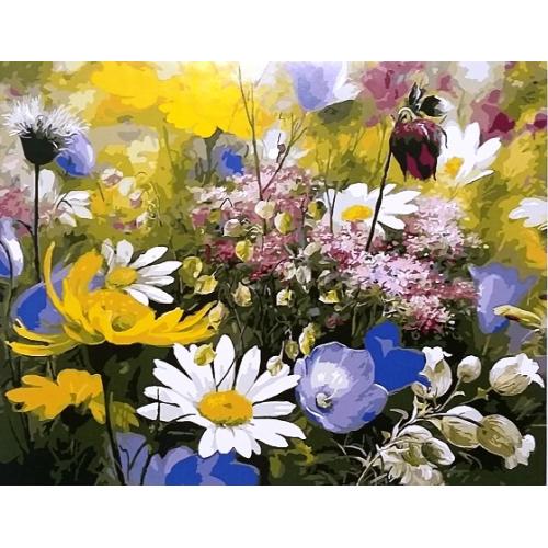Картина по номерам. Полевые цветы