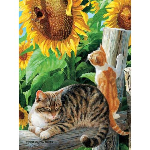 Картина на холсте по номерам. Кот